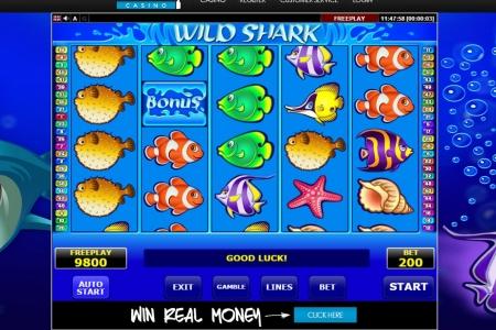 online casino ideal netent